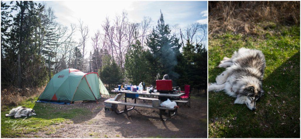 Gooseberry Falls Campsite