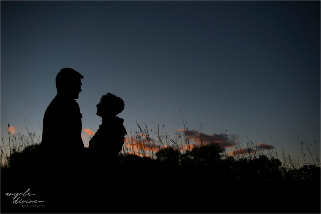 Coldwater Spring Park Minneapolis Engagement Session Twilight