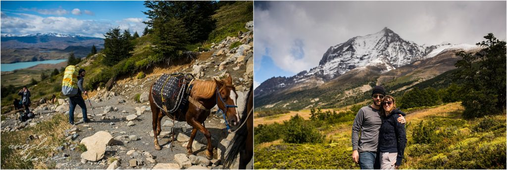 torres del paine w trek horses