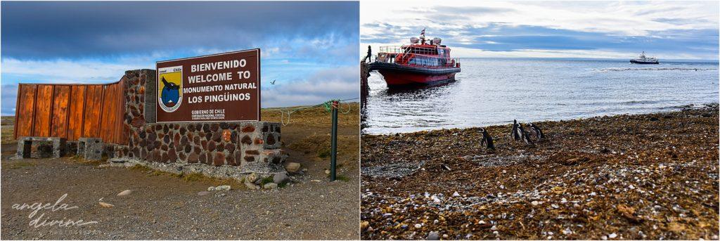 Punta Arenas Isla Magdalena entrance