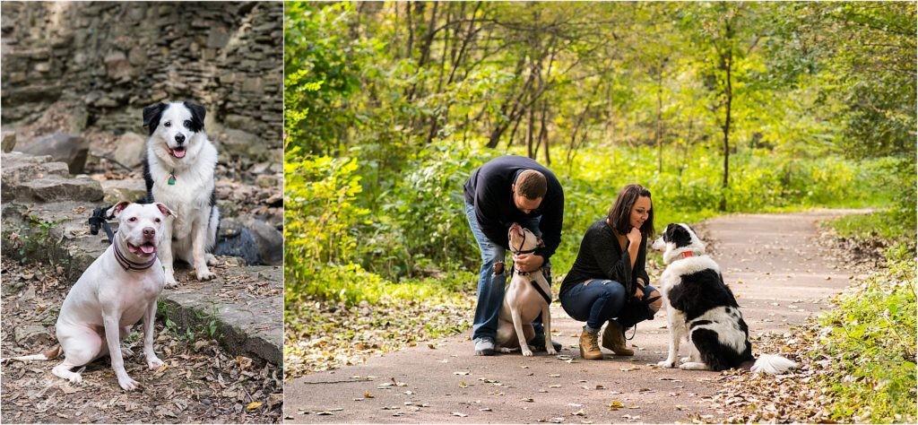 Minneapolis pet photographer- Fur is my family project - Riley and Erin
