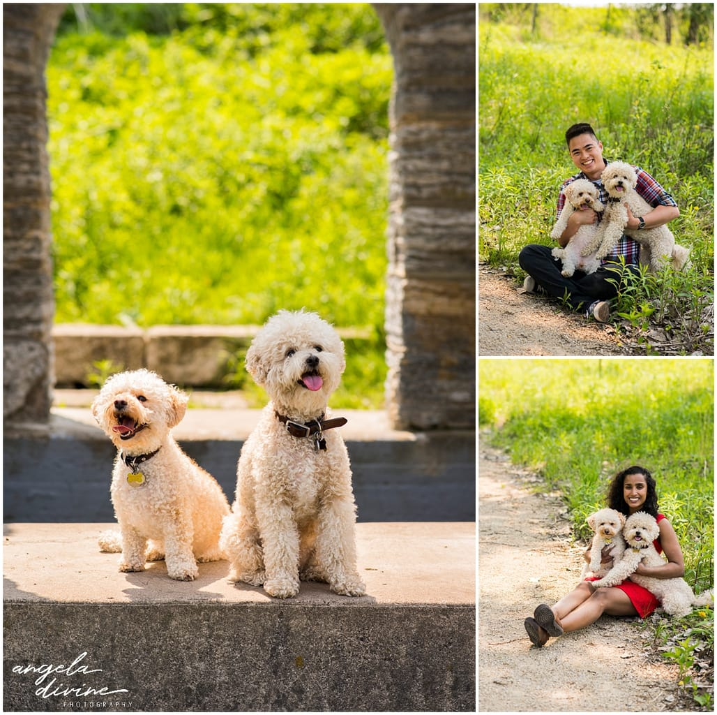 couple posing with pair of dogs