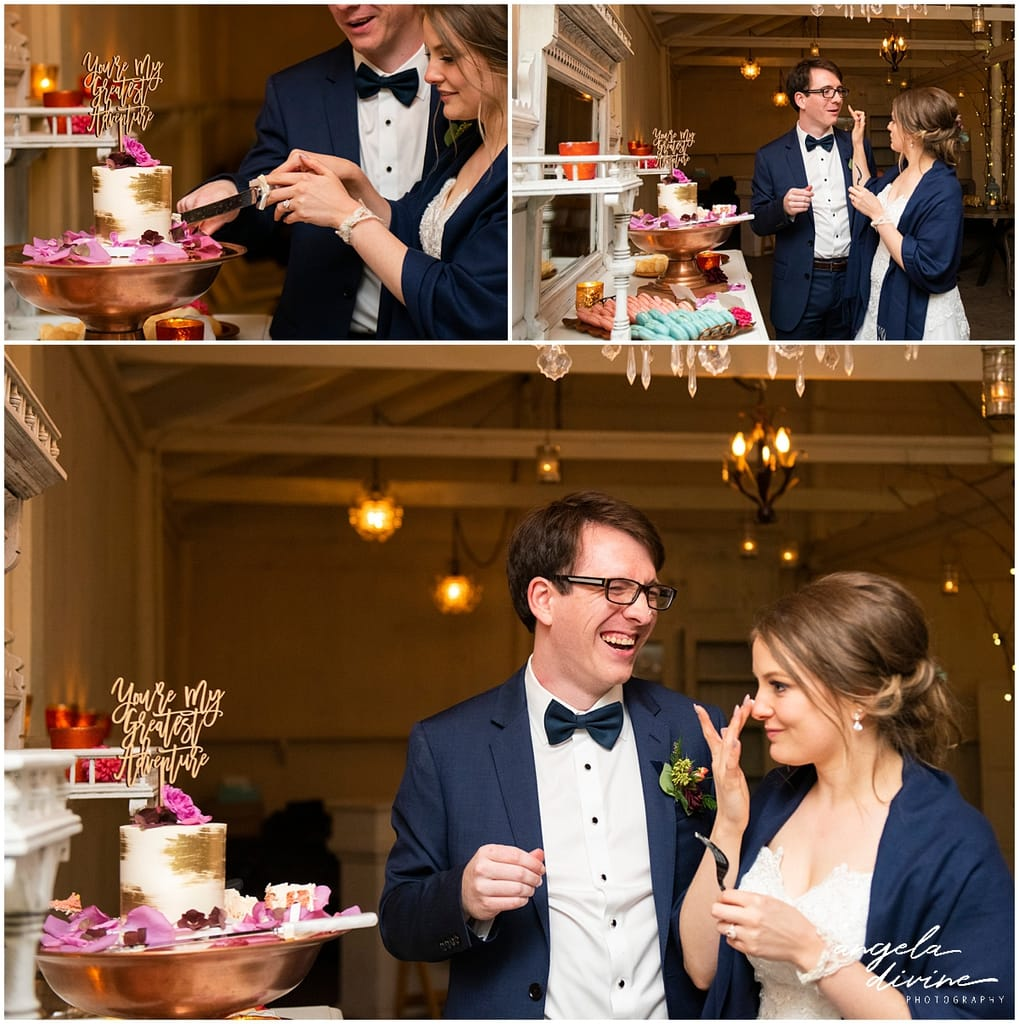 Camrose Hill Wedding cake cutting