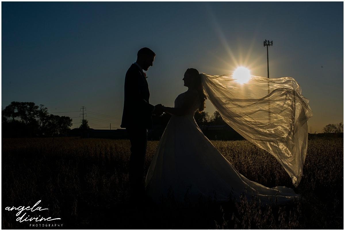 Rogers Minnesota wedding photography