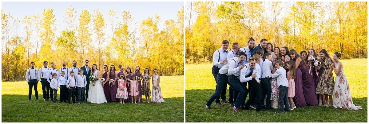 Rogers Minnesota Wedding Photography bridal party