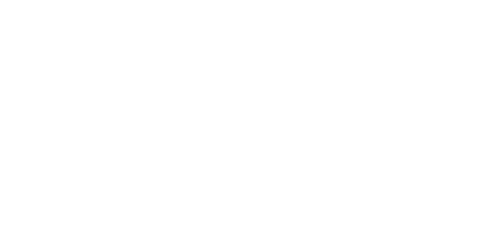 Minneapolis brand and wedding photographer