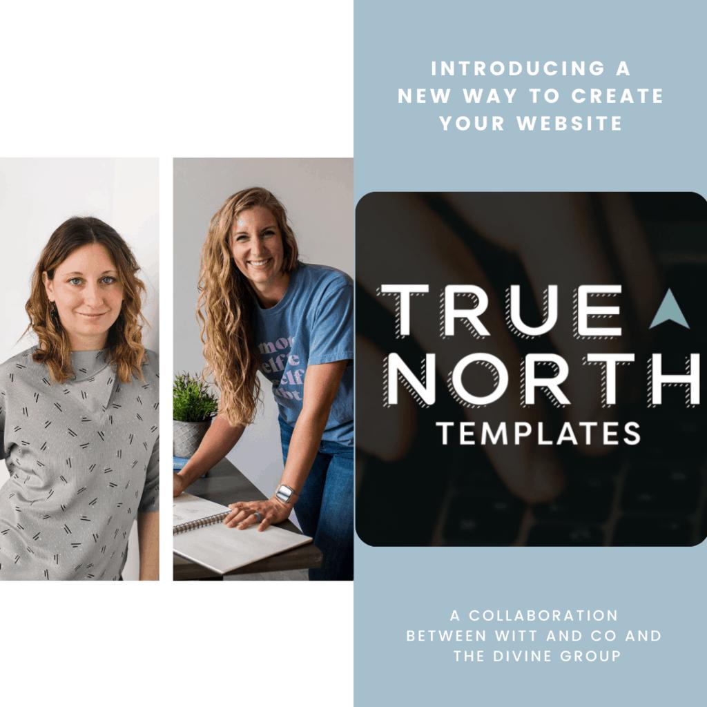 True North website template shop